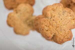 biscuit traditionnel ariege